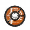 Flap Disc Malaysia, Flap Disc Supplier in Malaysia, Source Flap Disc in Malaysia.